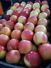 Яблоки Гала 70+.