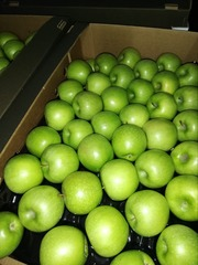Яблоки Гренни 70+.
